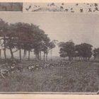 18913