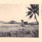 19014