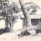 19043